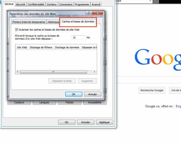 supprimer le cache du navigateur explorer internet