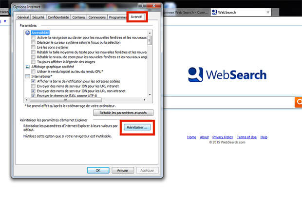 supprimer websearch