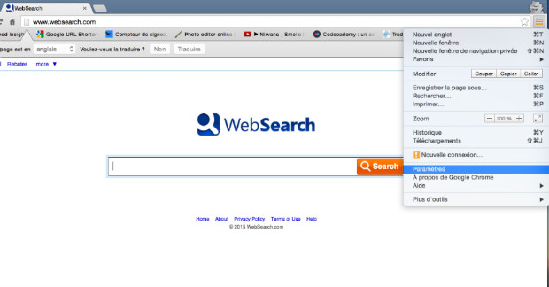 comment supprimer websearch